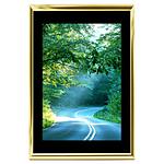12x18 Custom Gold Metal Frame, Black Mat with Glass