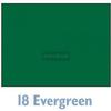 Savage Widetone Seamless Background Paper - 107in.x50yds. - #18 Evergreen