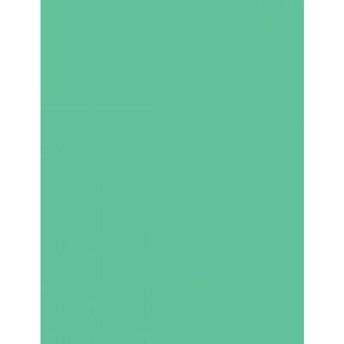 Savage Widetone Seamless Background Paper 107in X50yds 40 Mint Green Backgrounds Background Stands Savage At Unique Photo