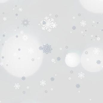 Savage 53X18 Printed Background - Winter Frost