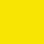 Savage Widetone Seamless Background Paper - 107in.x50yds. - #71 Deep Yellow