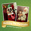 Holiday Pet Portraits with Santa